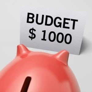 household budget benefits