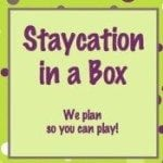 what to do on a stay cation