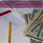 How I Blew My Family Budget, Part 2