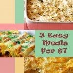 $7 Bag of Frozen Chicken Breasts = 3 Easy Meals: King Ranch Chicken, Easy Chicken Enchiladas, Chicken and Wild Rice Casserole