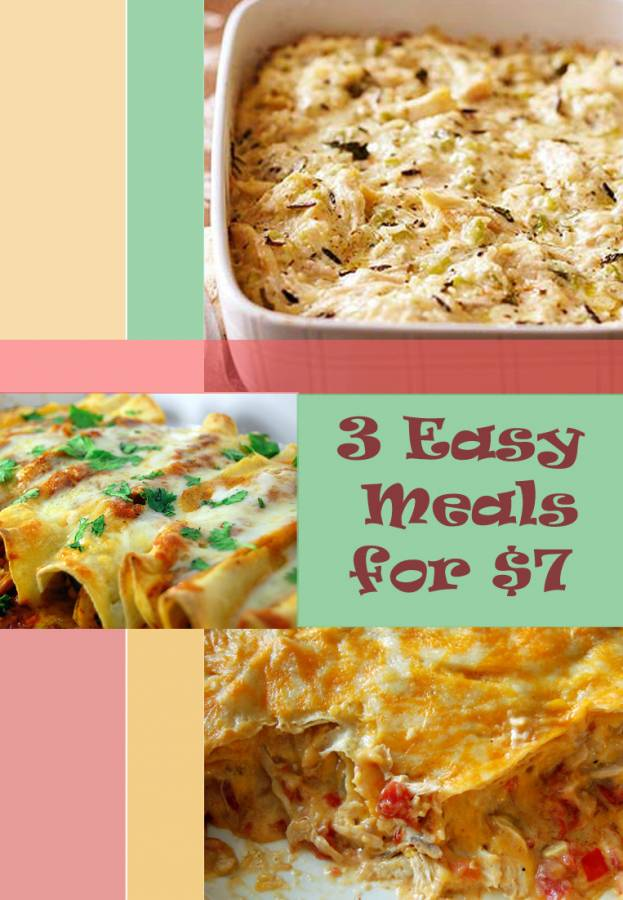 7 bag of frozen chicken breasts 3 easy meals king ranch chicken 3 fast and easy to prepare meals using just 7 worth of frozen chicken forumfinder Images