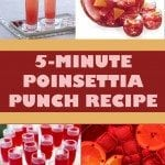 Save up on money for a party by making this easy 5-minute Poinsettia Punch. Your guests will never know how you made such a delicious drink for a cheap price.