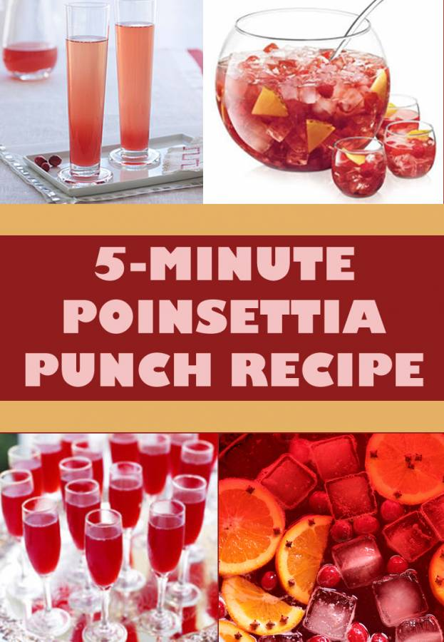 Poinsettia Punch Recipe