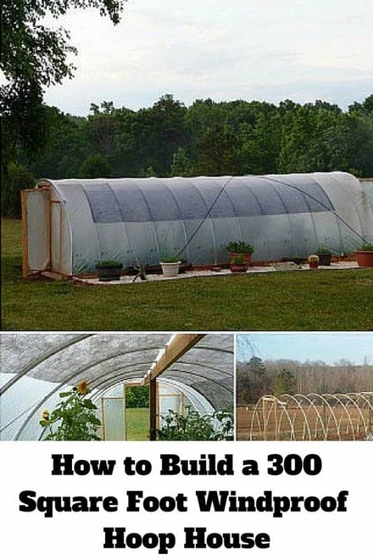 Build your own 300-square foot greenhouse to grow crops all year long. A sturdy and reliable house to protect your delicate plants.