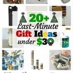 20+ Last-Minute Gift Ideas Under $30