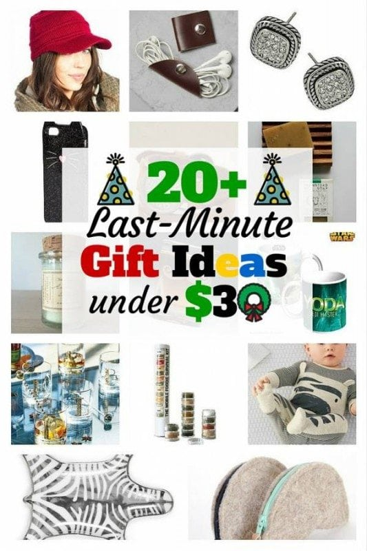 On a tight budget this season? Here is a list of last-minute gift ideas this holiday season that are under $30. Choose your gift now!