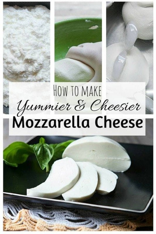 With basic tools and ingredients, you can make your own mozzarella cheese in less than an hour. It's fun to make and definitely saves you money.