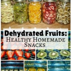 Dehydrated Fruits: Healthy Homemade Snacks