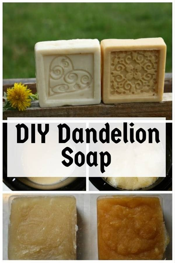 Learn how to create lovely and sweet-smelling DIY dandelion soaps. It is easy and fun to make.