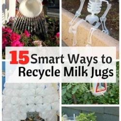 <thrive_headline click tho-post-168724 tho-test-32>15 Smart Ways to Recycle Milk Jugs</thrive_headline>