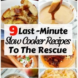 <thrive_headline click tho-post-169088 tho-test-51>9 Last-Minute Slow Cooker Recipes To The Rescue</thrive_headline>