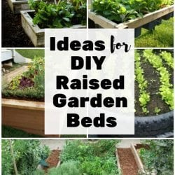 <thrive_headline click tho-post-169070 tho-test-47>Ideas for DIY Raised Garden Beds</thrive_headline>