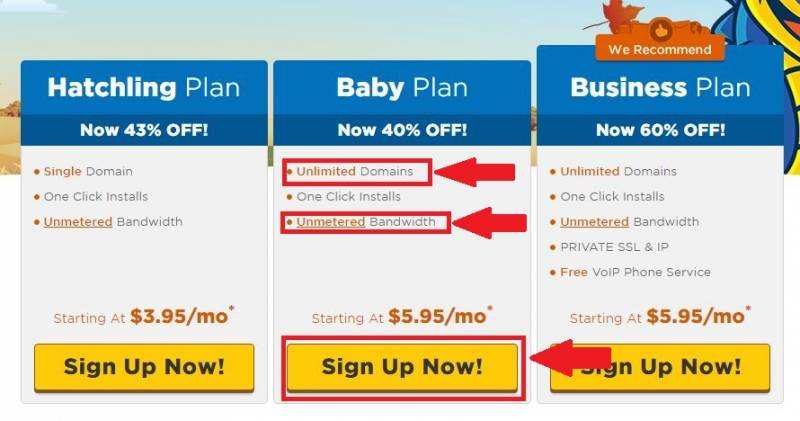 Choosing the best plan is essential to determine the success of your blog. Baby Plan is recommended for beginners.
