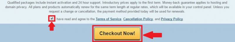Don't forget to agree with the Terms of Service of HostGator before hitting that Checkout Now! button.
