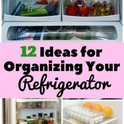 <thrive_headline click tho-post-170493 tho-test-117>12 Ideas for Organizing Your Refrigerator</thrive_headline>