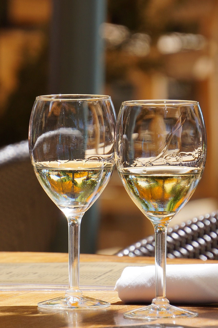 White wine is a perfect pair to oysters that the two of your will surely love.