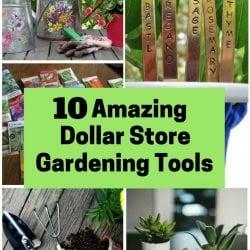 <thrive_headline click tho-post-170616 tho-test-123>10 Amazing Dollar Store Gardening Tools</thrive_headline>