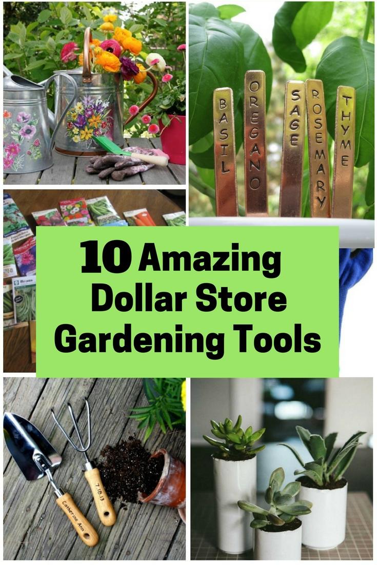 10 amazing dollar store gardening tools - the budget diet