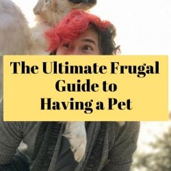 <thrive_headline click tho-post-183826 tho-test-155>The Ultimate Frugal Guide to Having a Pet</thrive_headline>