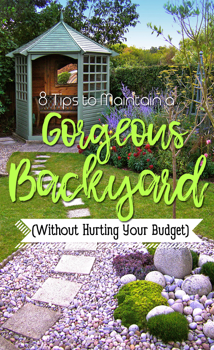 8 Tips to Maintain a Gorgeous Backyard (Without Hurting Your Budget Backyard Tips on scouting tips, go pro tips, office tips, landscaping tips, kayaking tips, restaurant tips, white tips, home repair tips, diy tips, photography tips, chalk paint tips, baby tips, exterior painting tips, wedding tips,