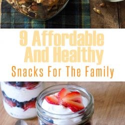 <thrive_headline click tho-post-232337 tho-test-184>9 Affordable And Healthy Snacks For The Family</thrive_headline>