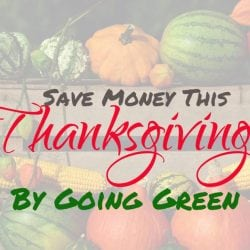 Save Money This Thanksgiving By Going Green