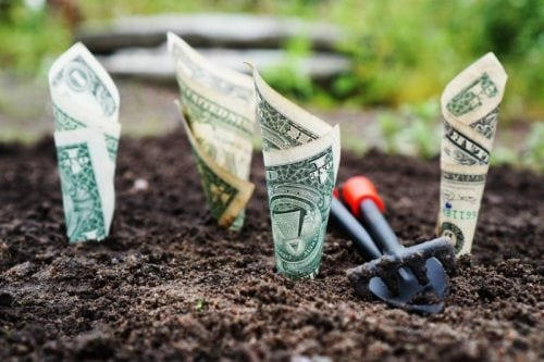 money investment in ground