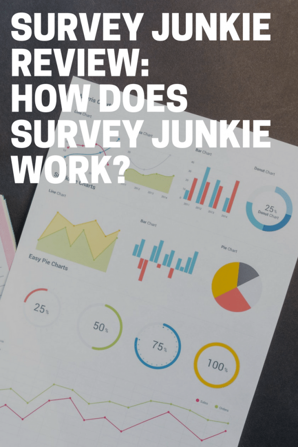 Survey Junkie Review: How Does Survey Junkie Work?