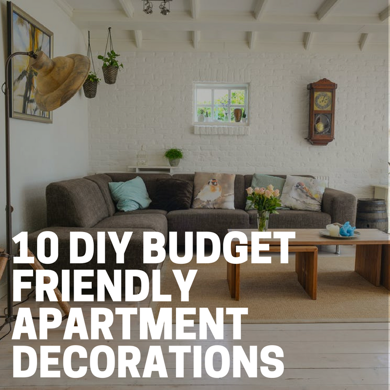 48 DIY Budget Friendly Apartment Decorations The Budget Diet Gorgeous Apartment Decor Diy